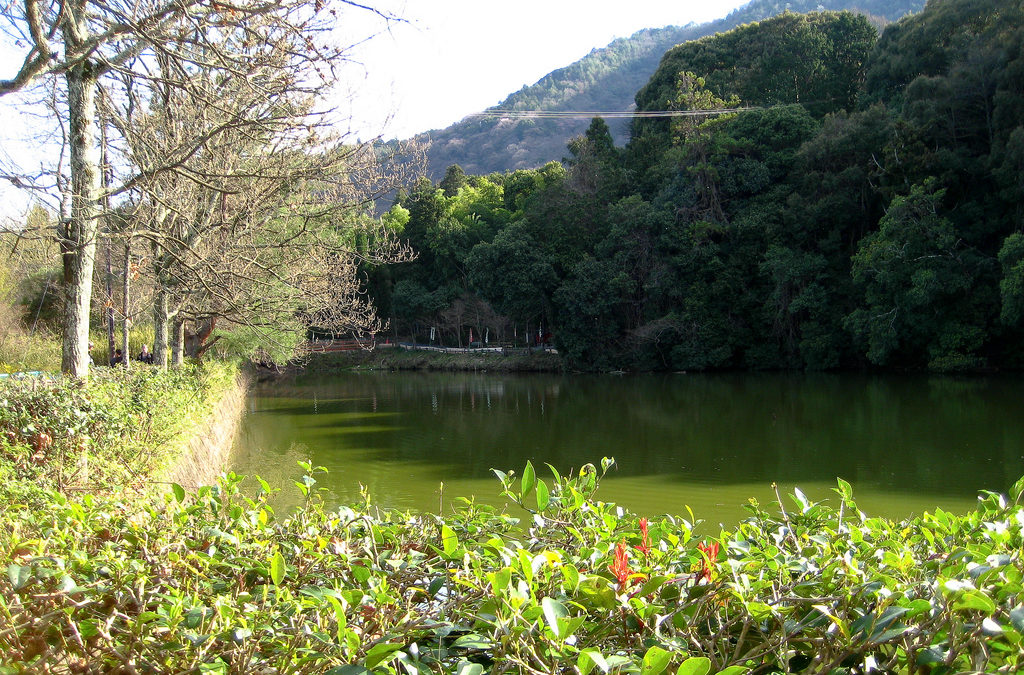 Japan : Okura-Ike pond, Arashiyama, Kyoto