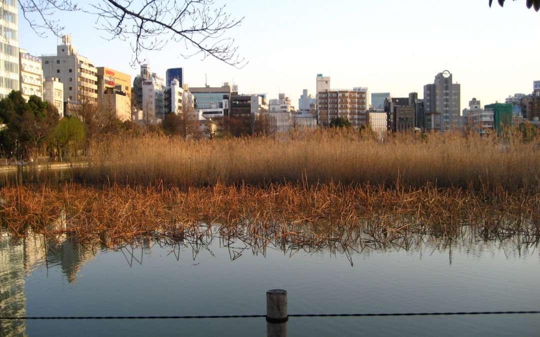 Japan : Ueno Park – Bells of Time